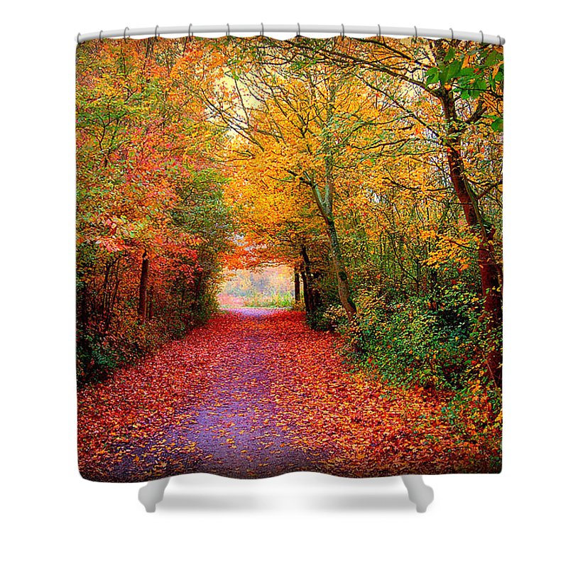 Autumn Shower Curtain featuring the photograph Hope by Jacky Gerritsen
