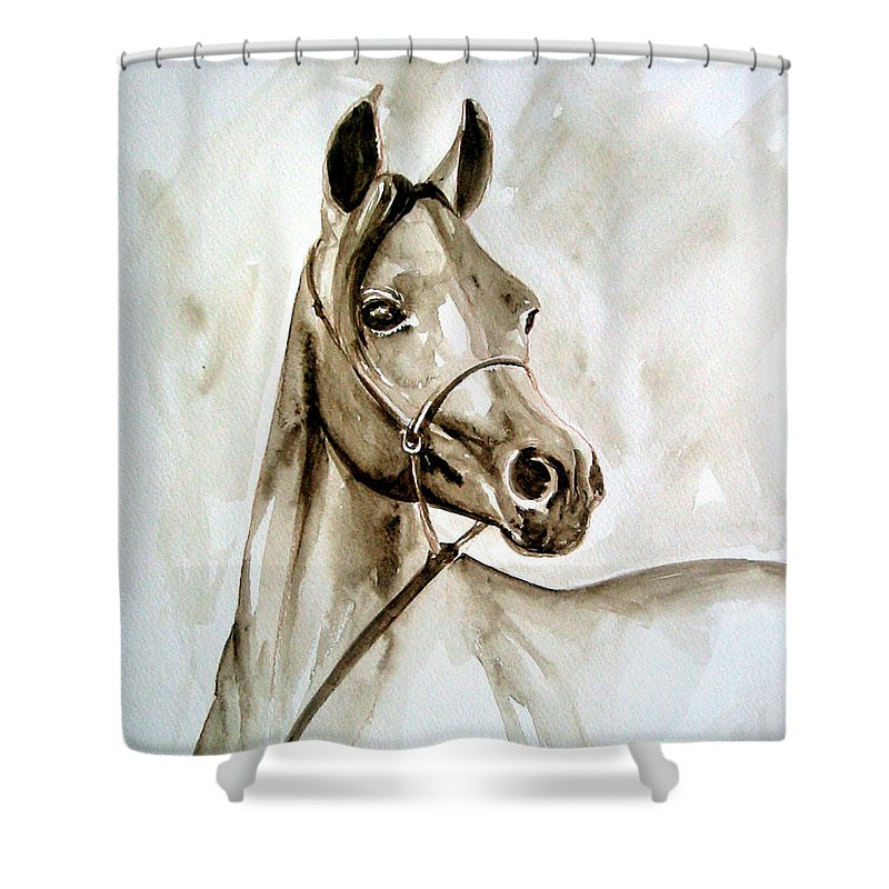 Portrait Of A Horse Shower Curtain featuring the painting Horse by Leyla Munteanu