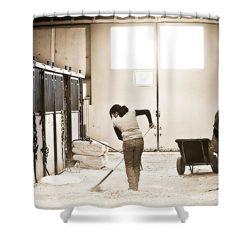 Horse Shower Curtain featuring the photograph Horse Work by Marilyn Hunt