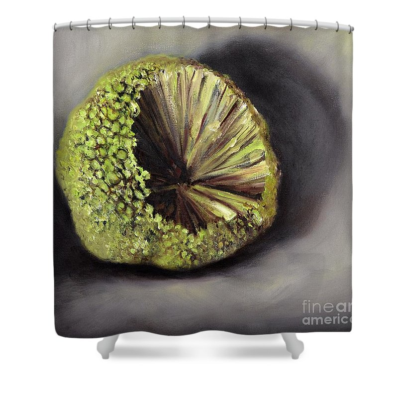 Hedgeapple Shower Curtain featuring the painting Horseapple by Randy Burns