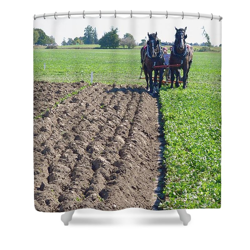 Horses Shower Curtain featuring the photograph Horses Plowing Rows Two by Lyle Crump