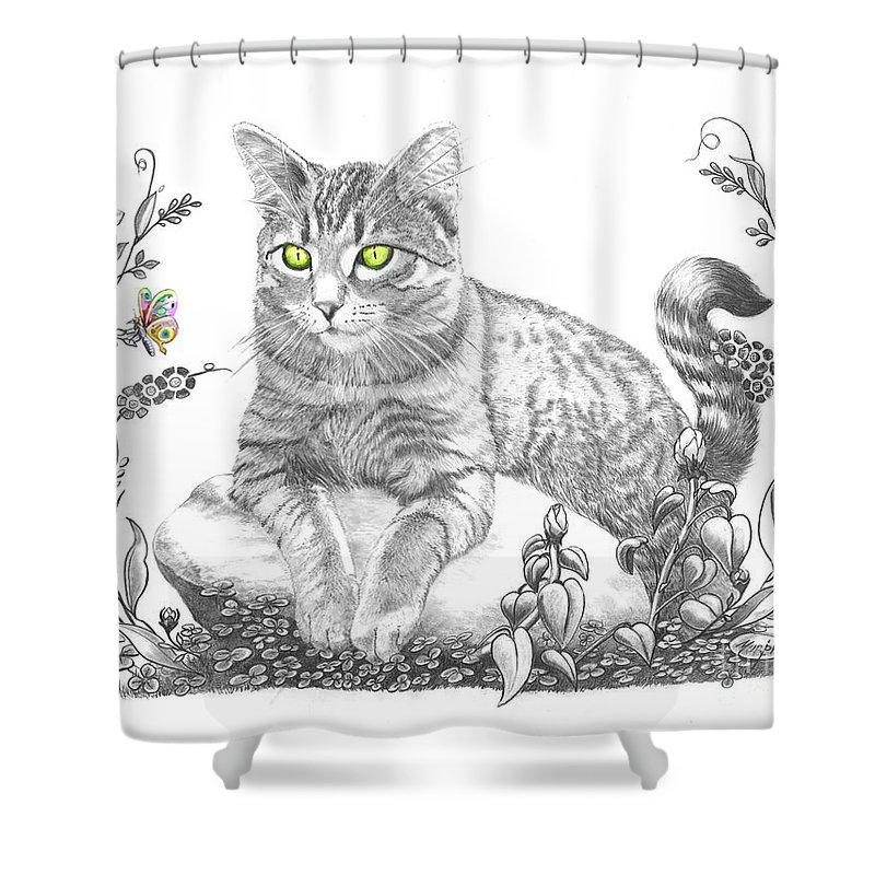 Cat Shower Curtain featuring the drawing House Cat by Murphy Elliott