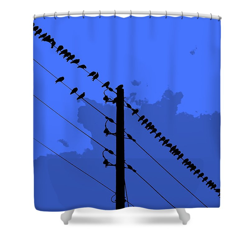 How Gossip Starts Shower Curtain featuring the photograph How Gossip Starts by Ed Smith