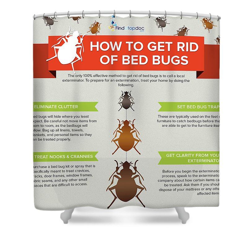 Bed Bugs Shower Curtain Featuring The Photograph How To Get Rid Of By FindaTopDoc