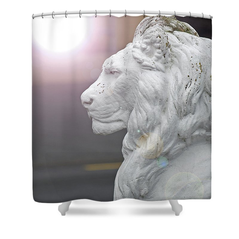 Morning Shower Curtain featuring the photograph How You Looked In The Morning by Dawn Richerson