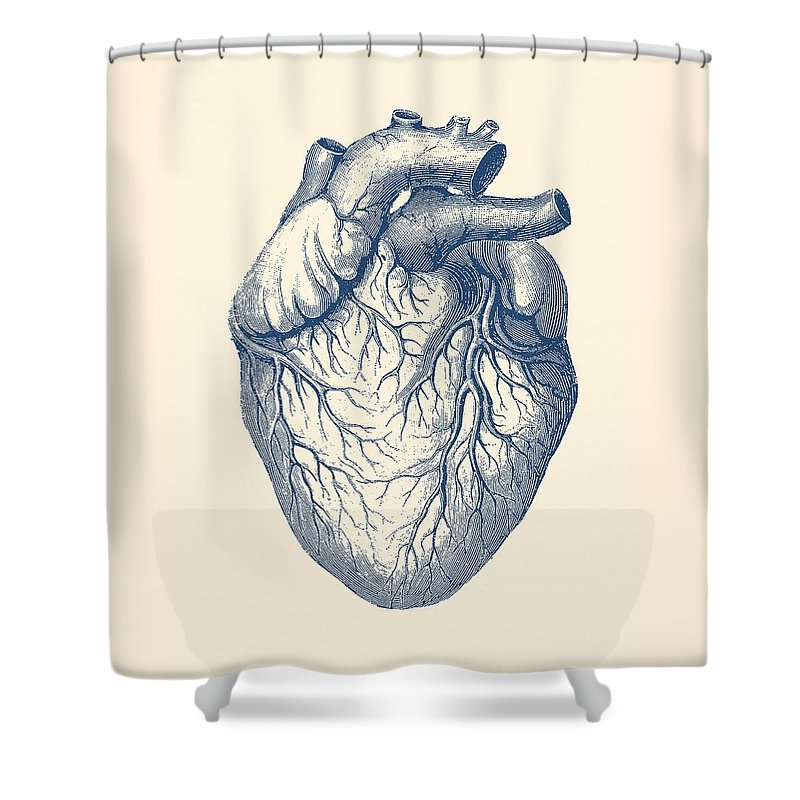 Heart Shower Curtain Featuring The Drawing Human