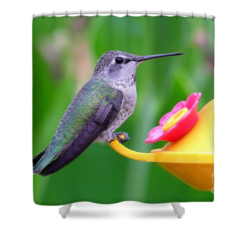 Green Shower Curtain featuring the photograph Hummingbird 32 by Mary Deal