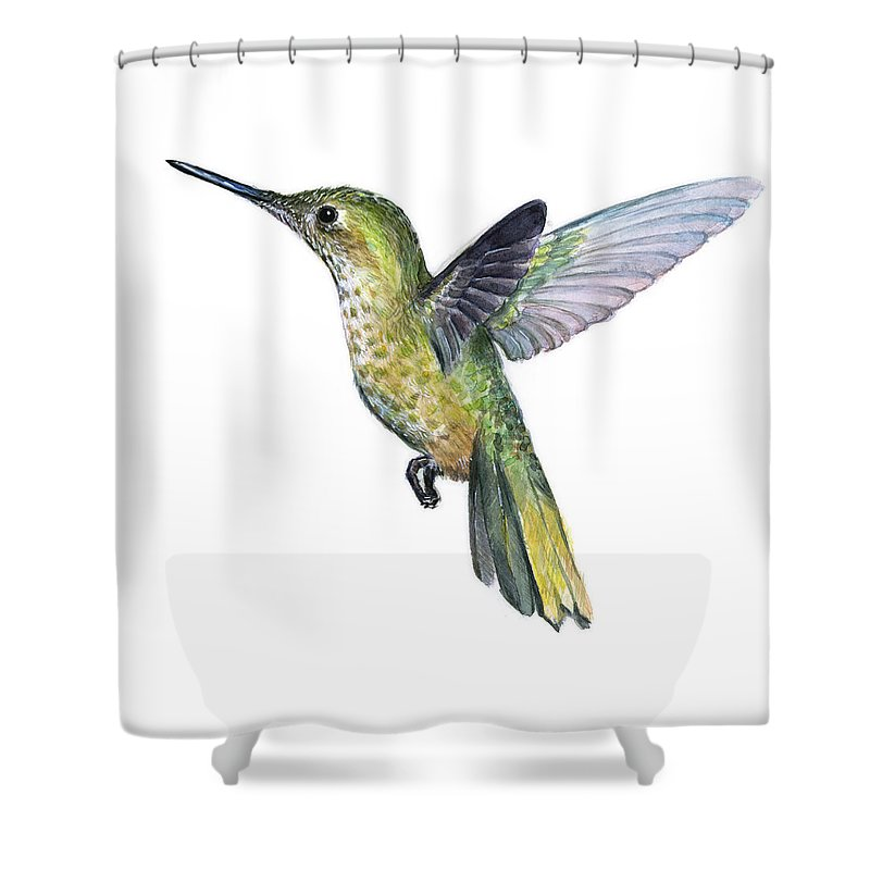 Hummingbird Shower Curtain Featuring The Painting Watercolor Illustration By Olga Shvartsur