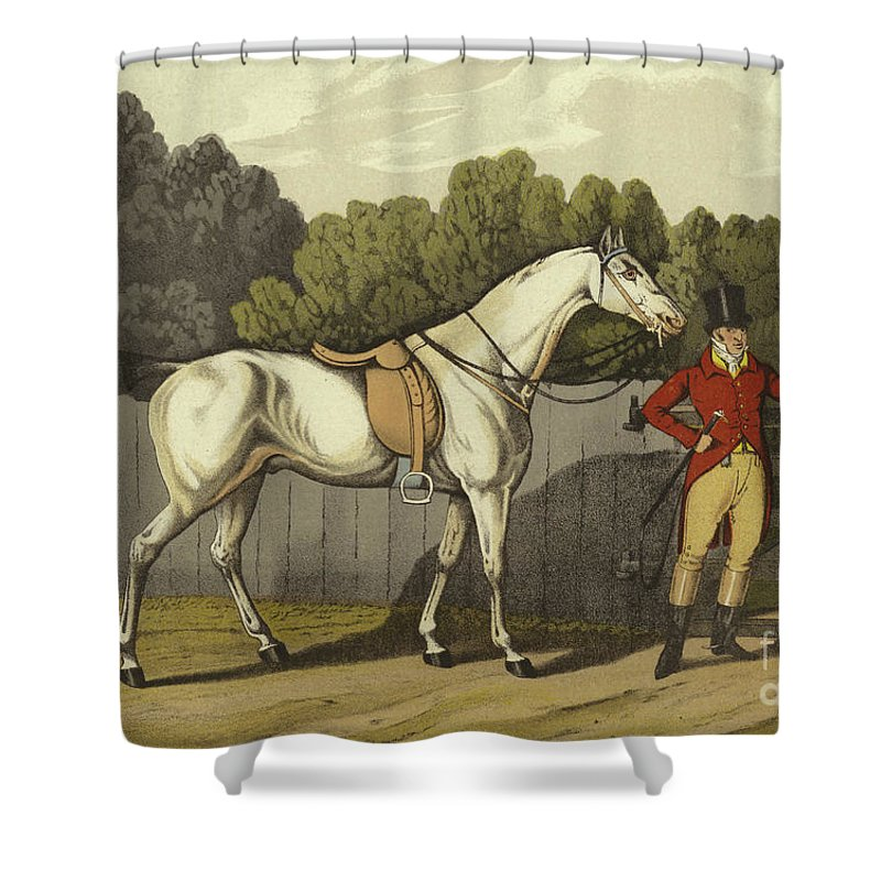 Riding Shower Curtains