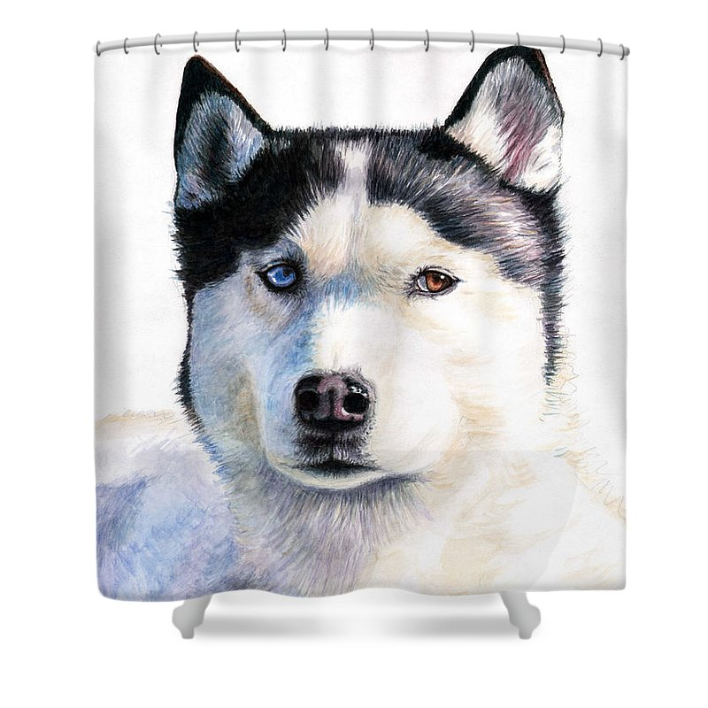 Dog Shower Curtain featuring the painting Husky Blue by Nicole Zeug