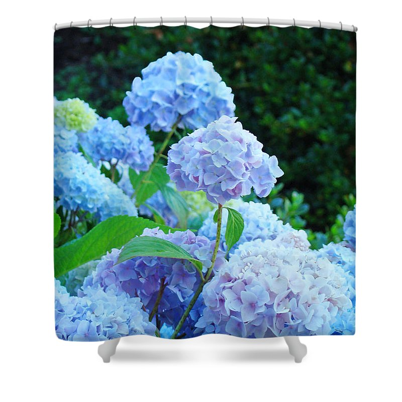 Landscape Shower Curtain featuring the photograph Hydrangea Garden Landscape Art Prints Baslee Troutman by Baslee Troutman