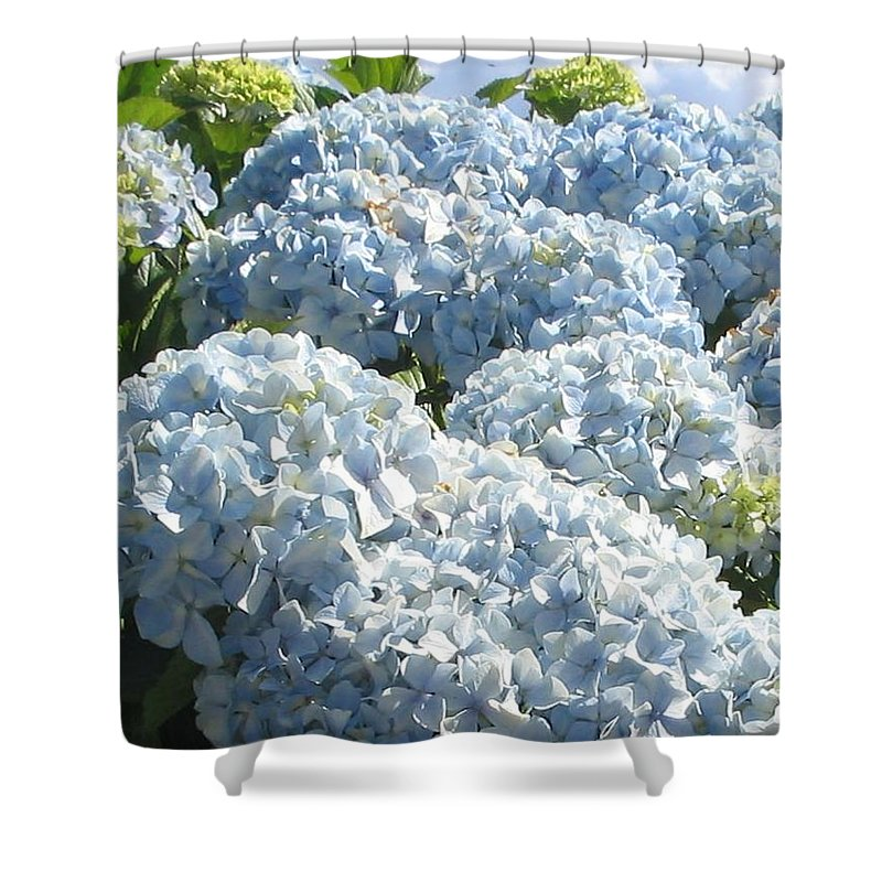 Blue Hydrangea Shower Curtain featuring the photograph Hydrangeas by Valerie Josi