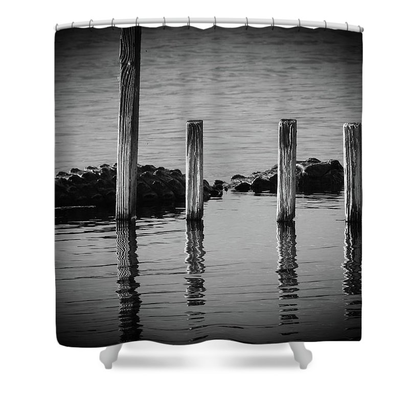 American Alligator Shower Curtain featuring the photograph I Am Gator, No. 86 by Elie Wolf