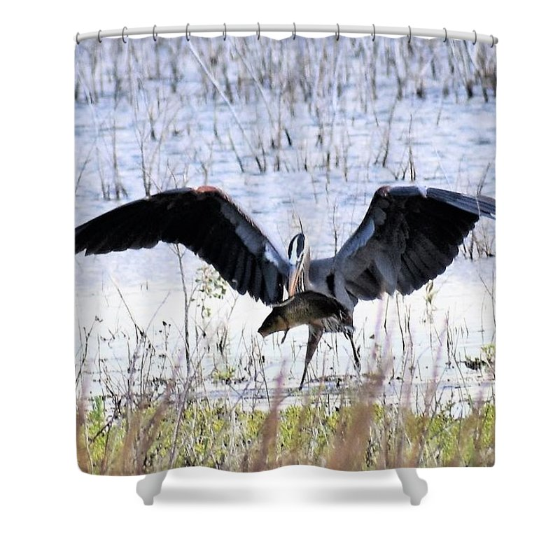 Great Blue Heron Shower Curtain featuring the photograph I Am The Greatest by Linda Burns