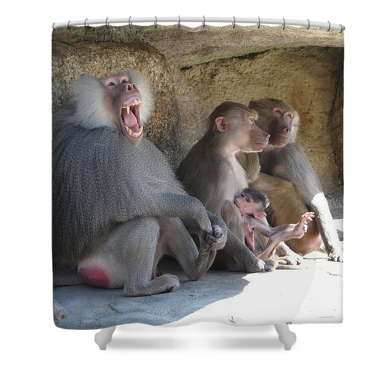 Animal Shower Curtain featuring the photograph I Am The King Here by Valerie Ornstein