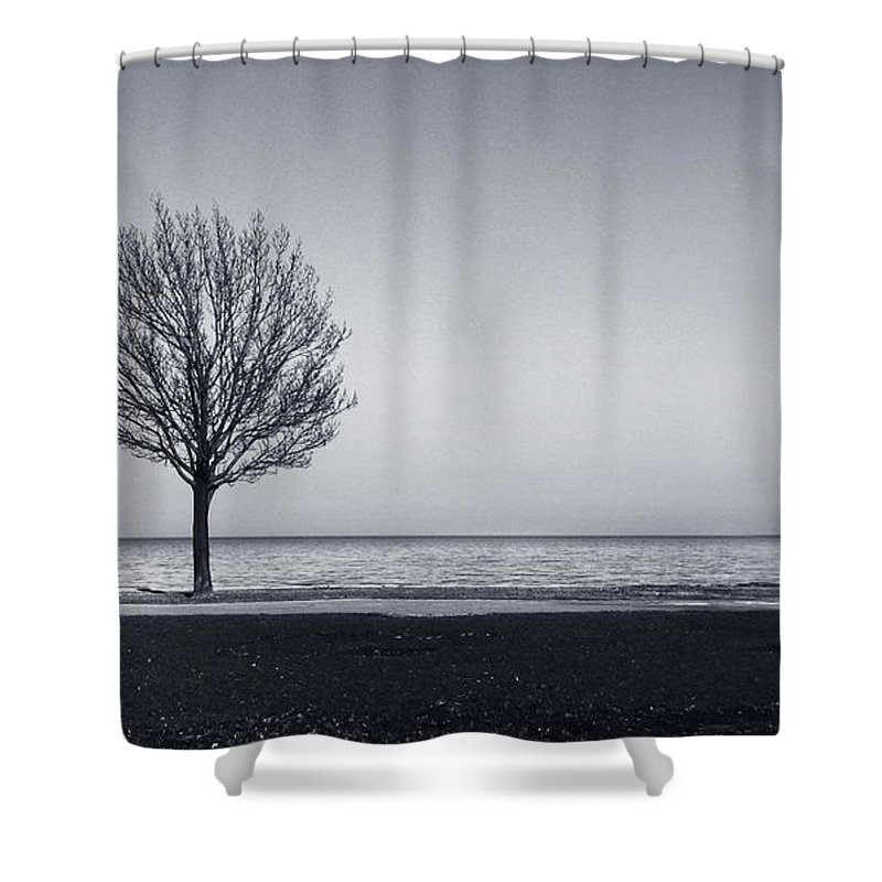 Tree Shower Curtain featuring the photograph I Didnt Hear You Leaving by Dana DiPasquale