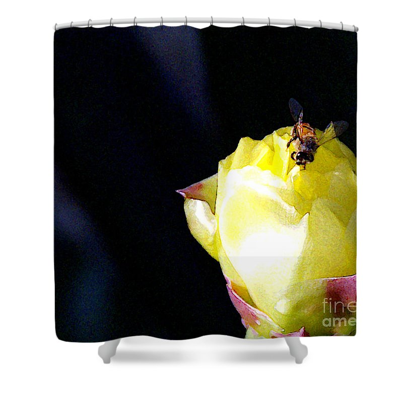 Cactus Shower Curtain featuring the photograph I Feel You Always Near by Linda Shafer