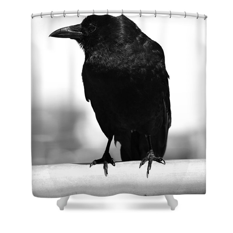 Street Photography Shower Curtain featuring the photograph I Have U by The Artist Project