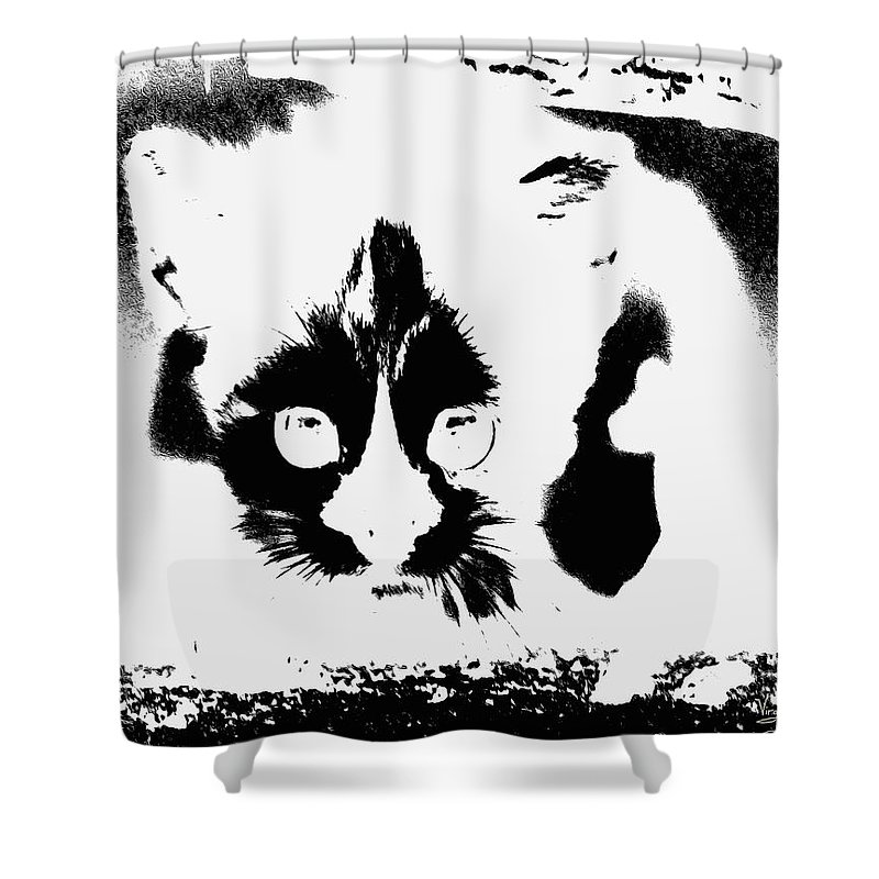 Black Andd White Shower Curtain featuring the painting    I See You by Virginia Bond