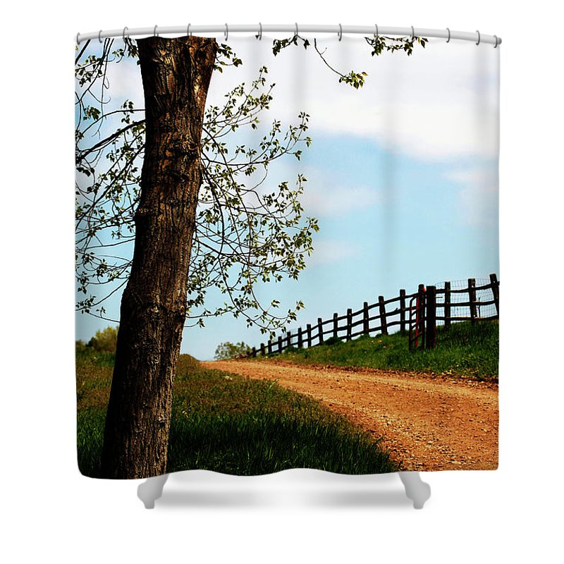 Walk Shower Curtain featuring the photograph I Walk The Gravel Road by Marilyn Hunt