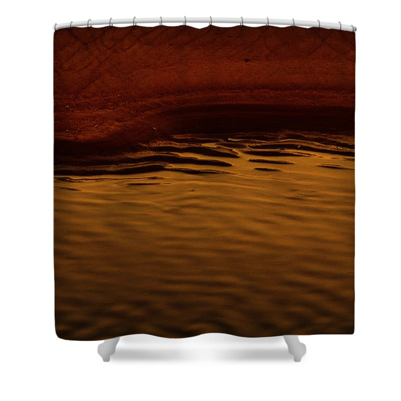 Abstract Shower Curtain featuring the photograph I Want To Wake Up Where You Are by Dana DiPasquale