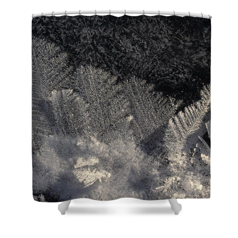 Nobody Shower Curtain featuring the photograph Ice Crystals Form Feather Shapes On Ice by Michael S. Quinton