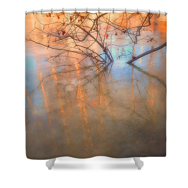 Ice Shower Curtain featuring the photograph Ice Reflections 2 by Tara Turner