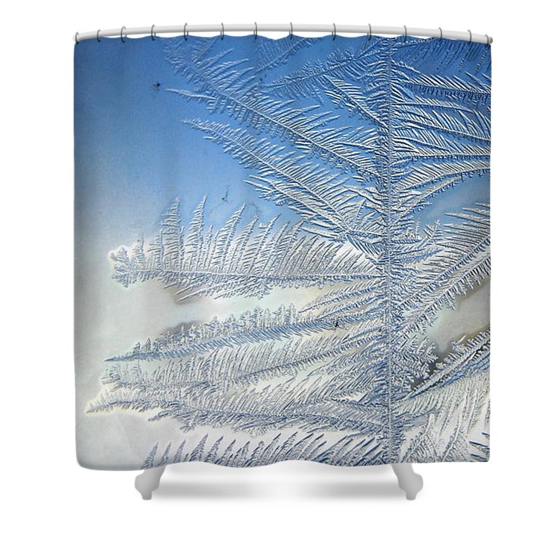 Ice Shower Curtain featuring the photograph Ice Tree by Rhonda Barrett