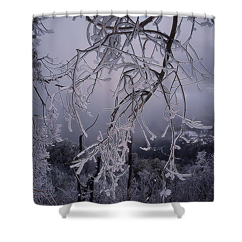 Palomar Shower Curtain featuring the photograph Ice Trees by Hugh Smith