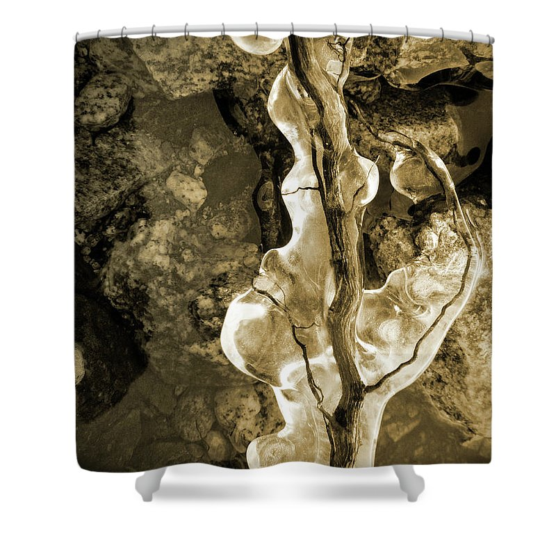 Ice Shower Curtain featuring the photograph Iced by Tara Turner