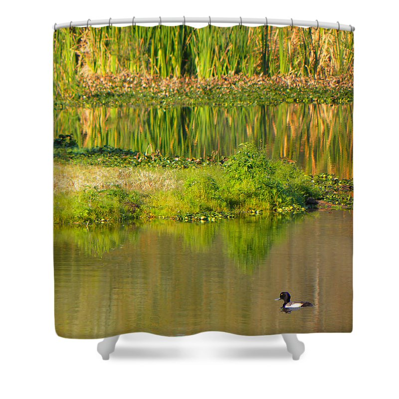 Reflections Shower Curtain featuring the photograph Illusion Confusion by Rosalie Scanlon