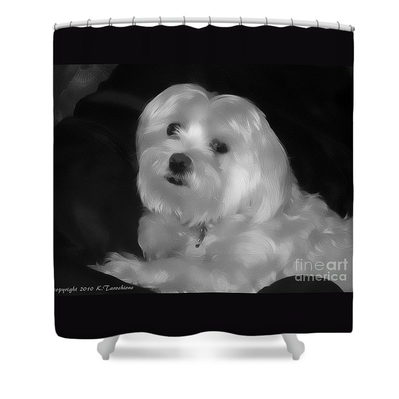 Dog Shower Curtain featuring the digital art I'm The One For You by Kathy Tarochione
