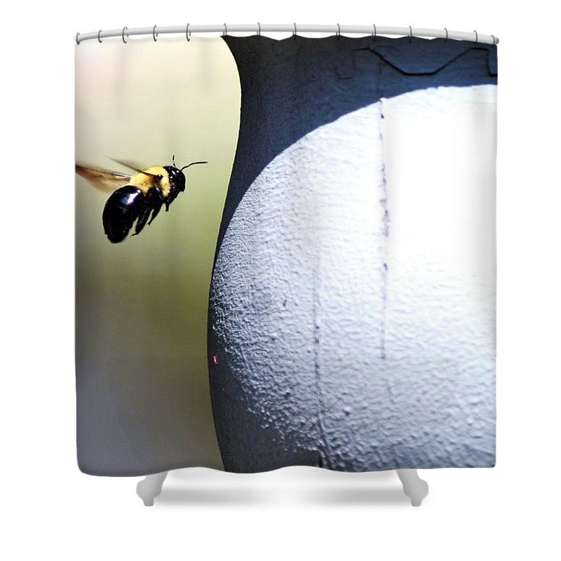 Bees Shower Curtain featuring the photograph Ima Bee by Cassandra Dice