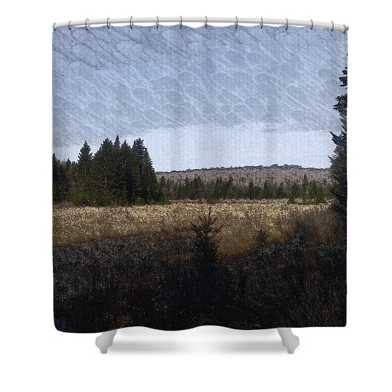 Impressionist Shower Curtain featuring the digital art Impressionist Meadow by Kevin Humphrey