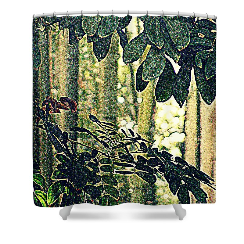 Photography Shower Curtain featuring the photograph In A Bamboo Garden by Nancy Kane Chapman