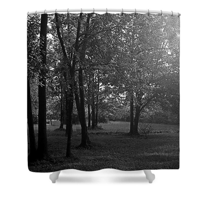 Feild Shower Curtain featuring the photograph In A Dream by Hannah Breidenbach