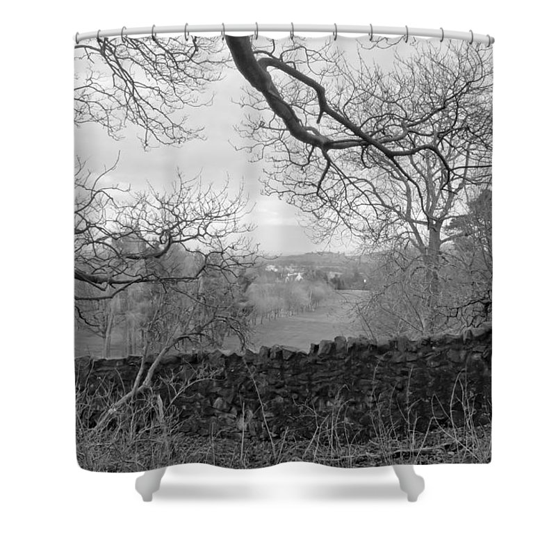 Bare Tree Shower Curtain featuring the photograph In December. by Elena Perelman