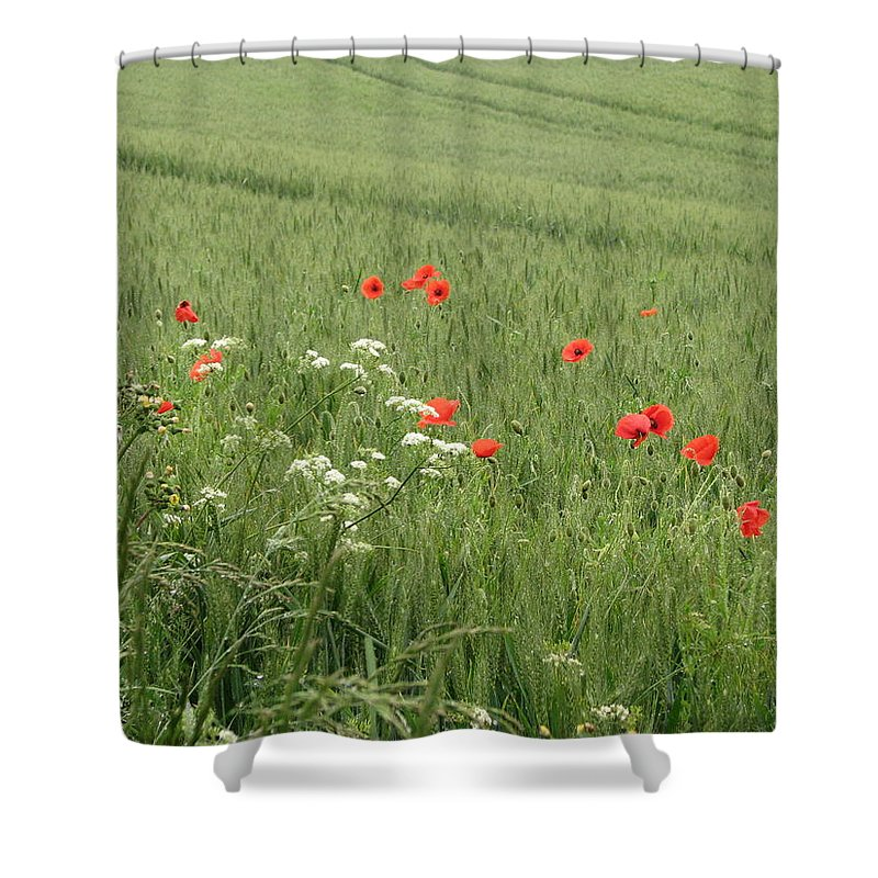 Lest-we Forget Shower Curtain featuring the photograph in Flanders Fields the poppies blow by Mary Ellen Mueller Legault