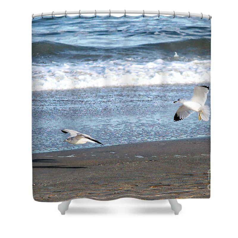 Gulls Shower Curtain featuring the photograph In For A Landing by Karin Everhart