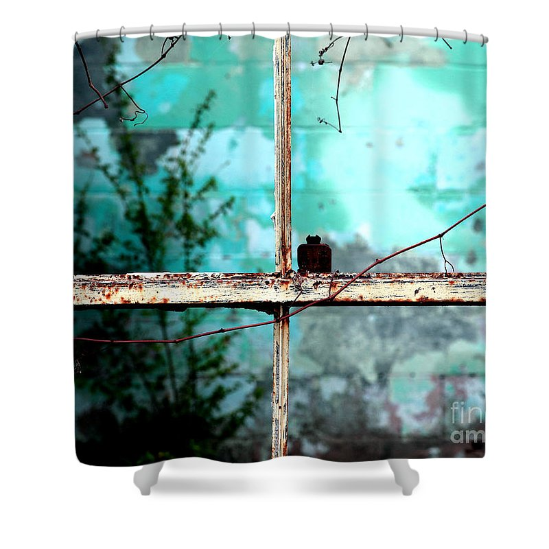 Windows Shower Curtain featuring the photograph In Or Out by Amanda Barcon