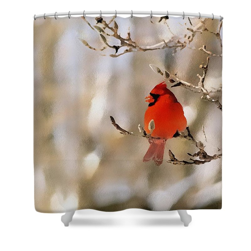 Cardinal Shower Curtain featuring the photograph In Red by Gaby Swanson