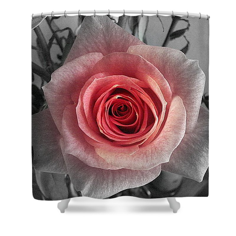 Rose Red Blackandwhite Shower Curtain featuring the photograph In The Center by Luciana Seymour
