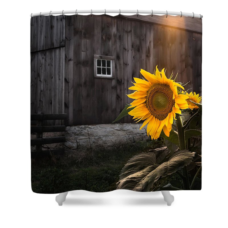Farmland Shower Curtains