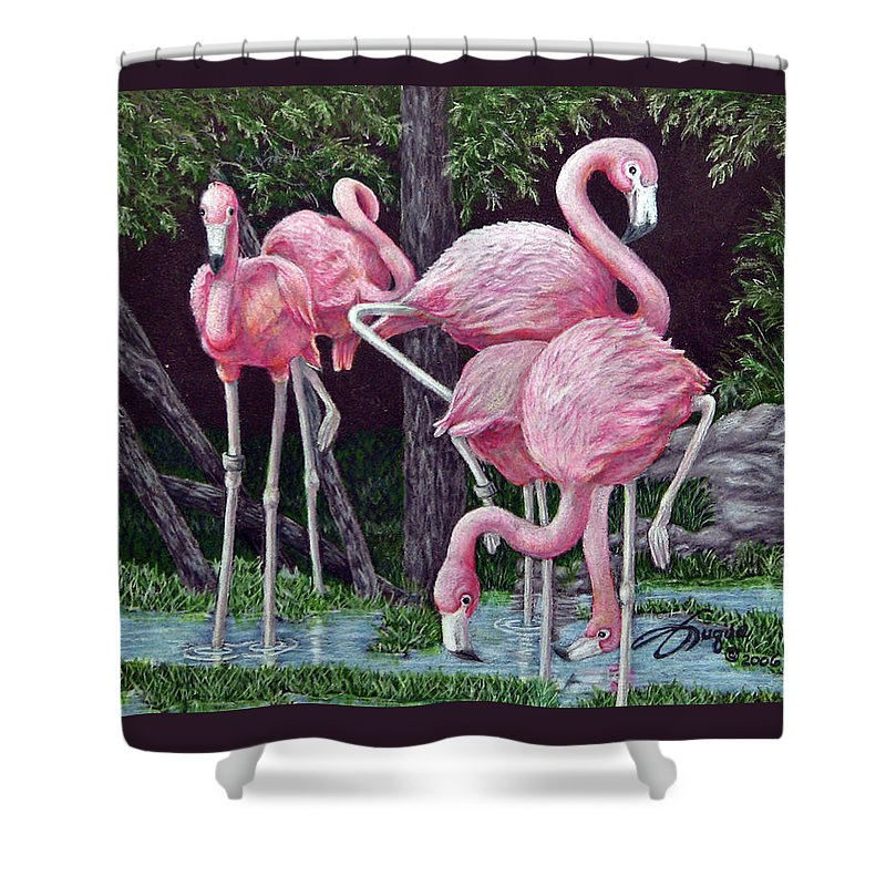 Fuqua Gallery-bev-artwork. Wildlife Shower Curtain featuring the drawing In The Pink by Beverly Fuqua