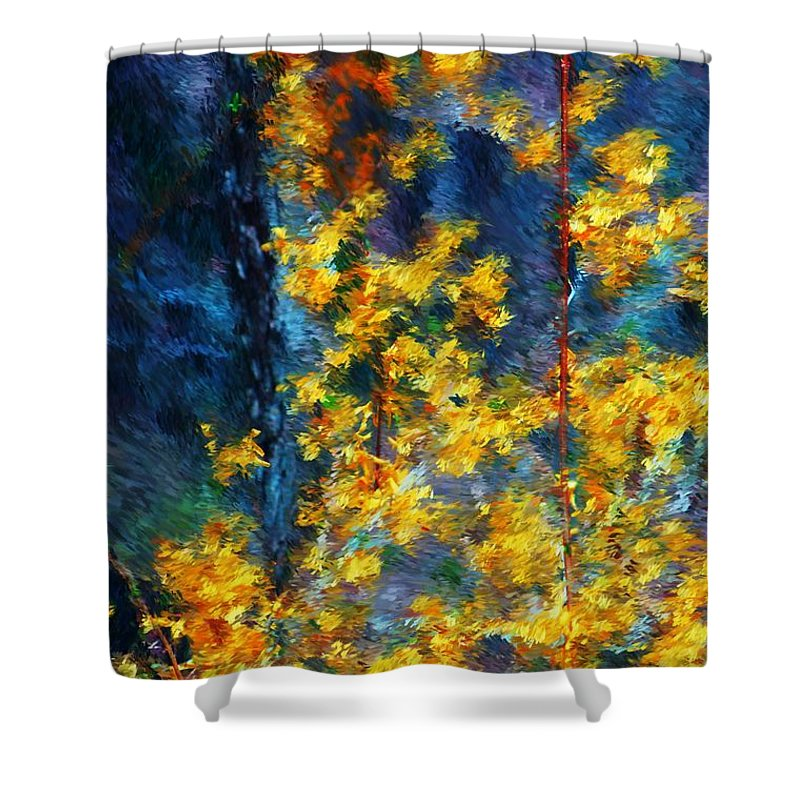 Nature Shower Curtain featuring the photograph In The Woods Again by David Lane
