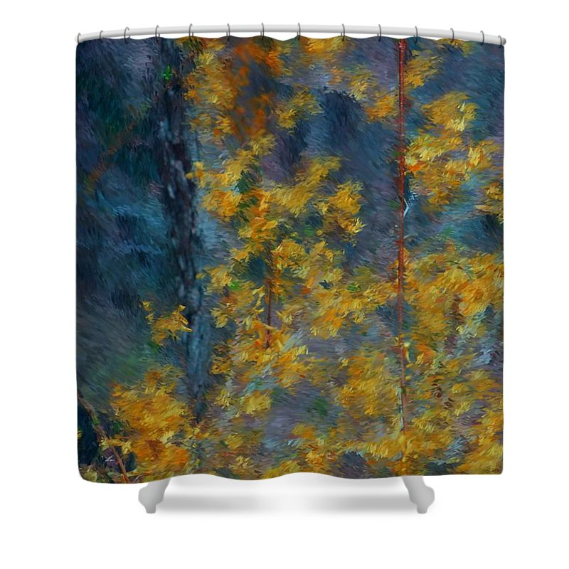 Shower Curtain featuring the photograph In The Woods by David Lane