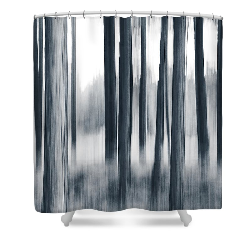 Panning Shower Curtain featuring the photograph In The Woods by Dorit Fuhg