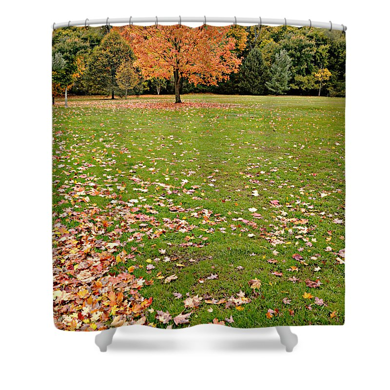 Landscape Shower Curtain featuring the photograph Tell Him Please by Diana Angstadt