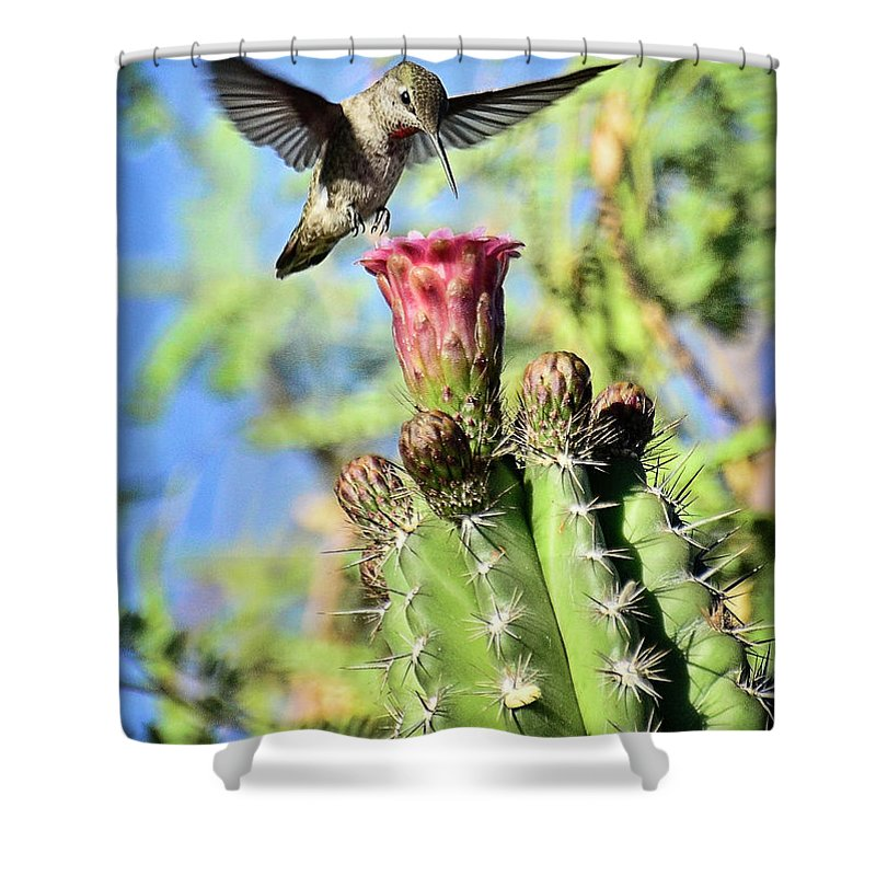 Hummingbird Shower Curtain featuring the photograph Incoming by Saija Lehtonen
