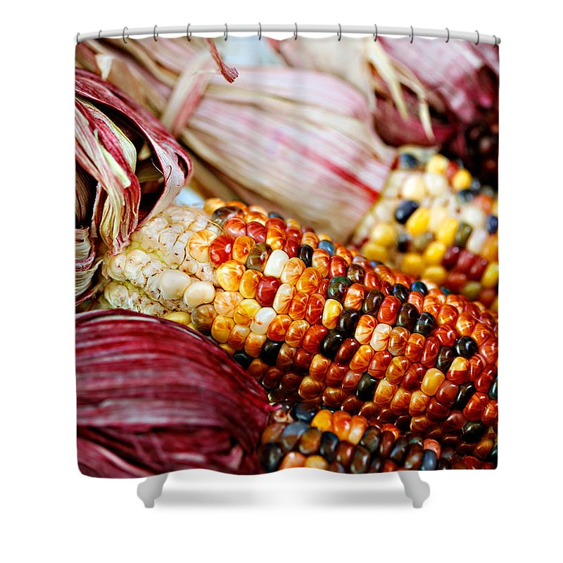 Corn Shower Curtain featuring the photograph Indian Corn by Marilyn Hunt